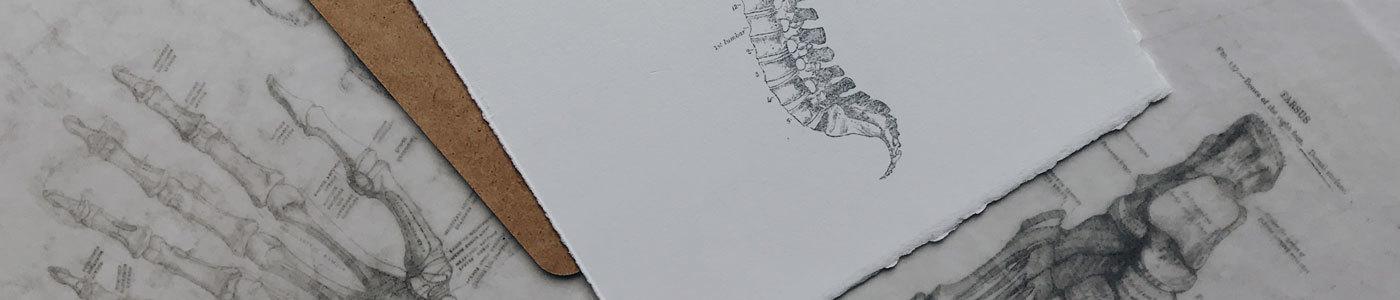 Комплекс для проработки тазобедренных суставов, поясницы и крестца