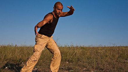 Ян-цигун стиля Йинг| Техника выполнения и «энергетический смысл движений
