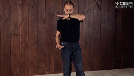 Теория техники Ян-цигун стиля Йинг
