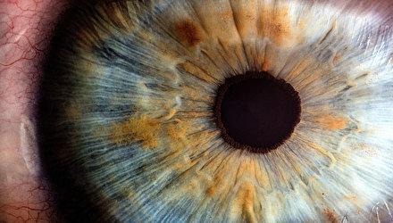 Гимнастика для глаз и концентрации